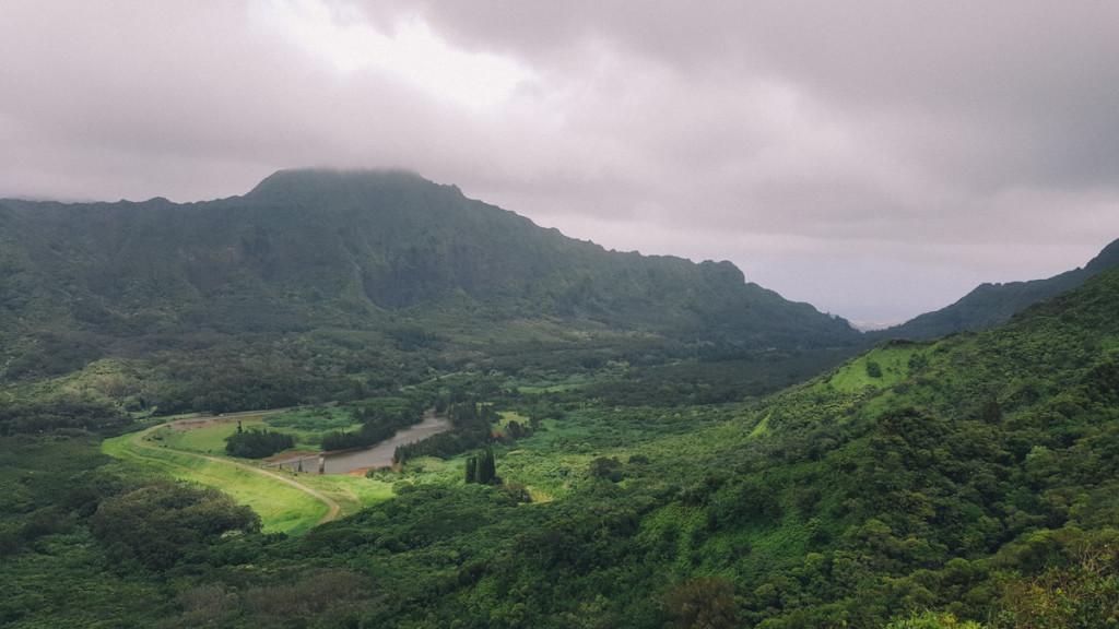 Manoa_to_Aihualama_Trail (10 of 21)