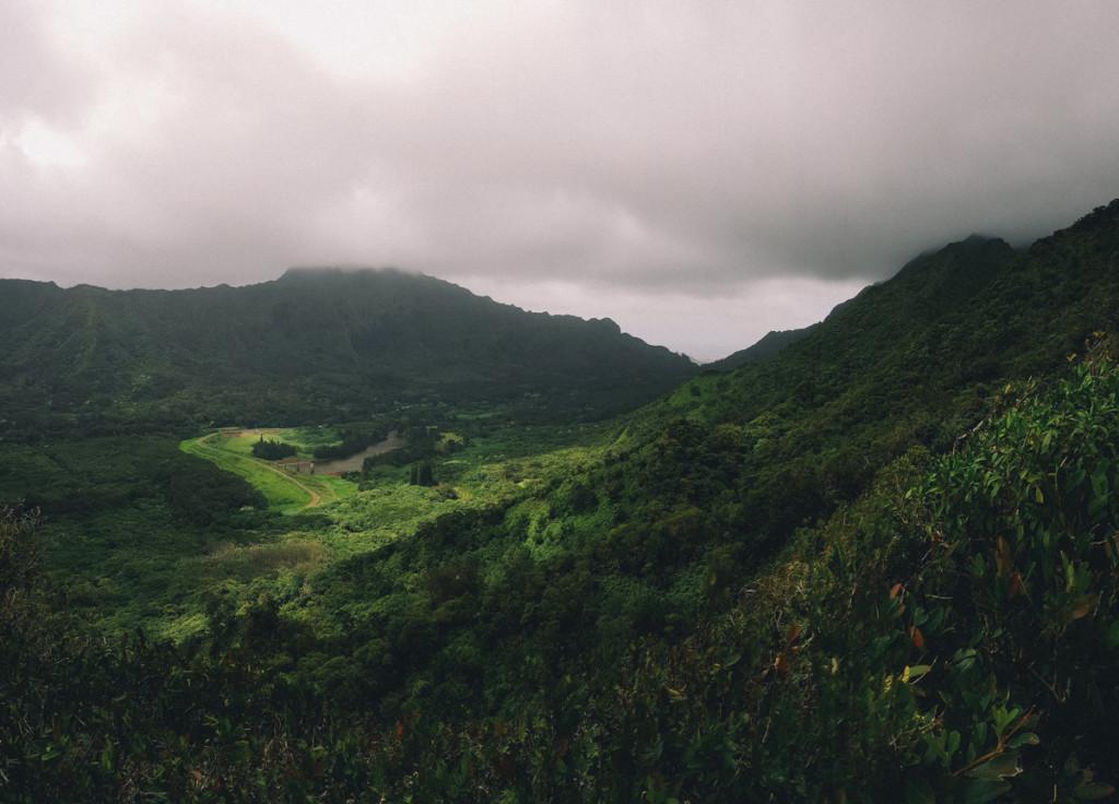 Manoa_to_Aihualama_Trail (11 of 21)