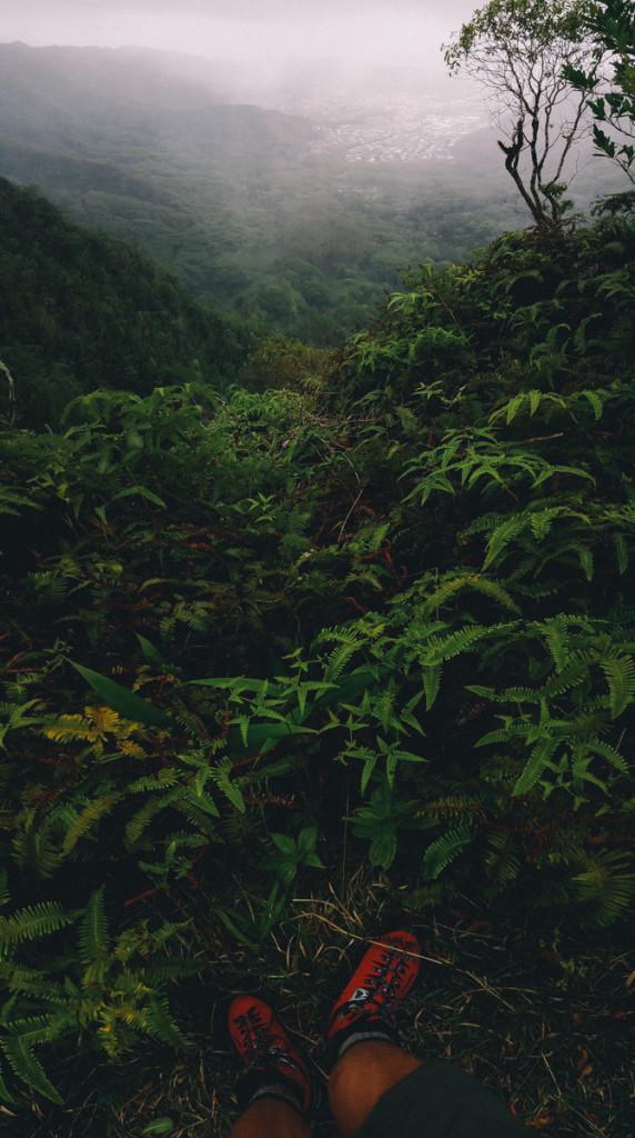 Manoa_to_Aihualama_Trail (14 of 21)