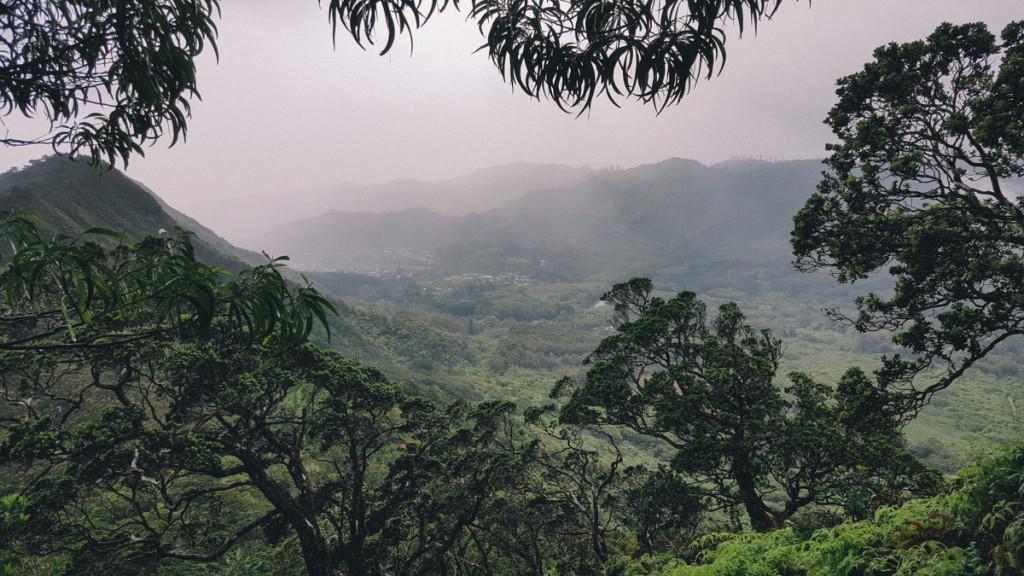 Manoa_to_Aihualama_Trail (19 of 21)
