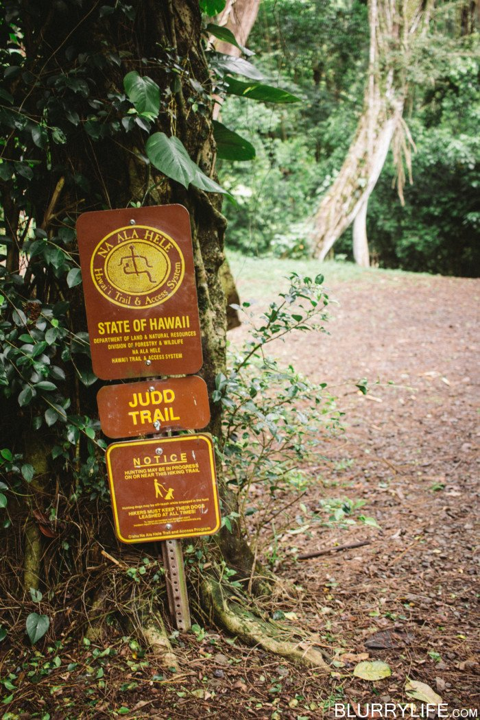 judd_trail_nuuanu_valley_oahu_hawaii-12