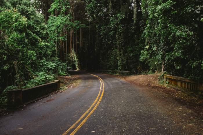 judd_trail_nuuanu_valley_oahu_hawaii-13