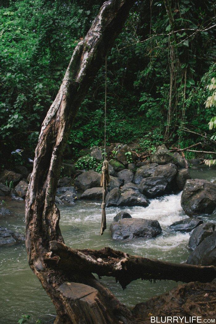 judd_trail_nuuanu_valley_oahu_hawaii-29