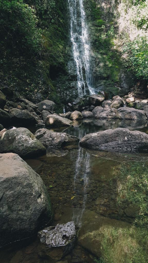 lulumahu_falls_trail_oahu (10 of 25)