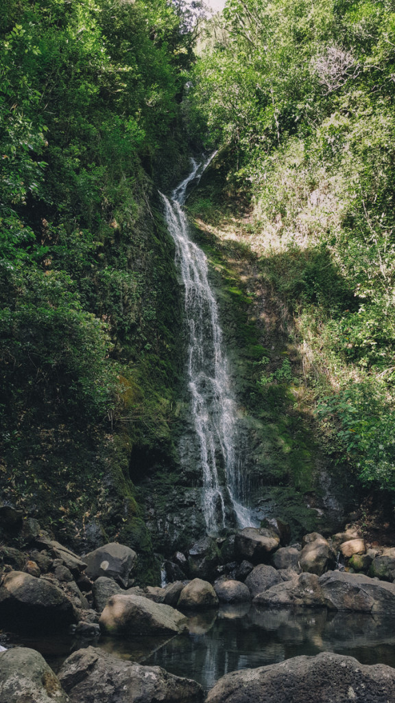lulumahu_falls_trail_oahu (11 of 25)