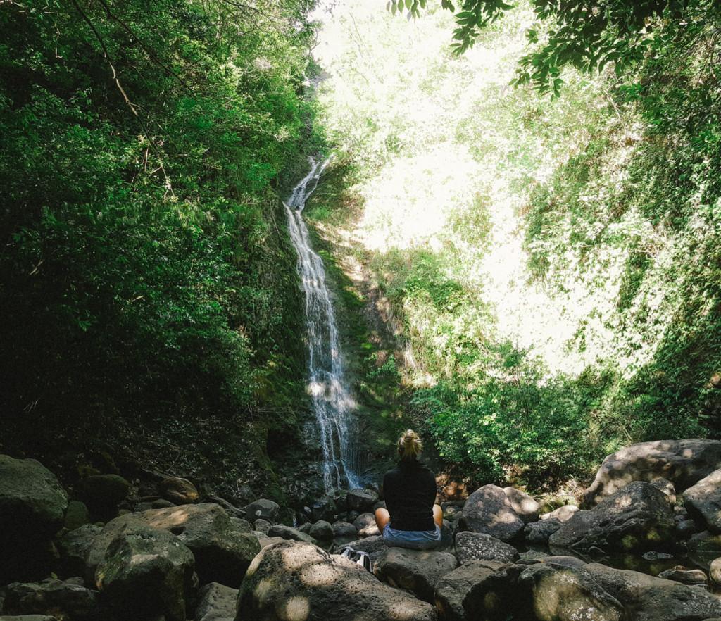 lulumahu_falls_trail_oahu (13 of 25)
