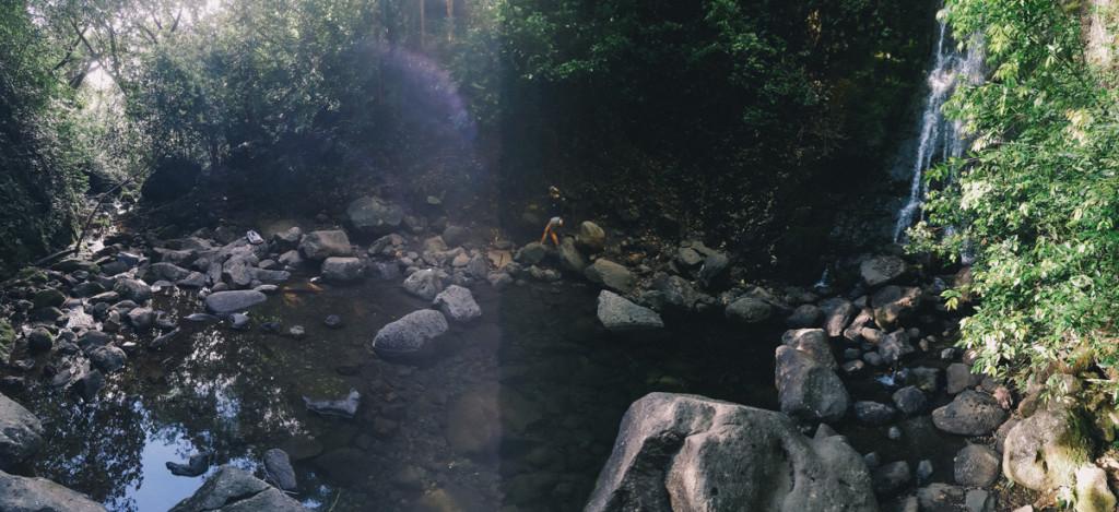 lulumahu_falls_trail_oahu (17 of 25)