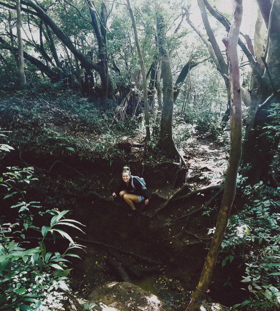 lulumahu_falls_trail_oahu (4 of 25)