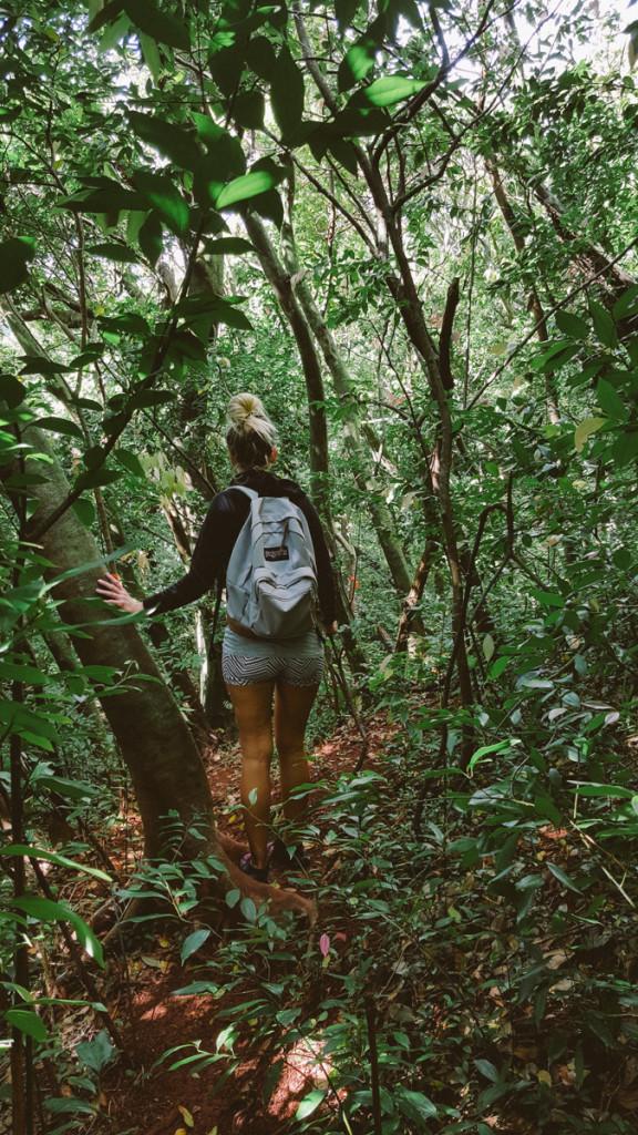 lulumahu_falls_trail_oahu (5 of 25)