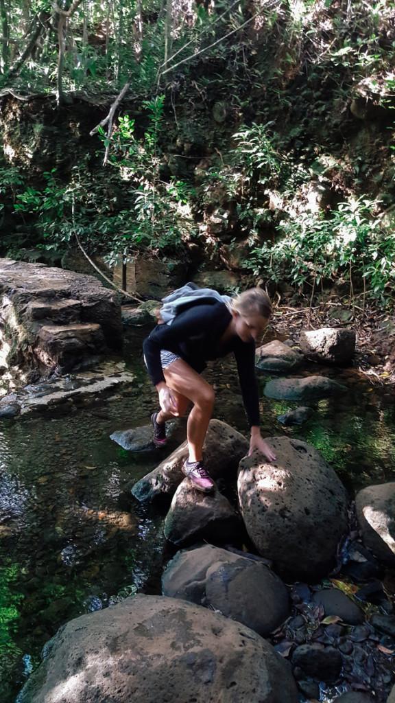 lulumahu_falls_trail_oahu (8 of 25)