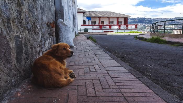 ecuador_trip_day2_banos-28