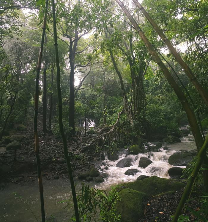 luakah_falls_oahu_hawaii-1