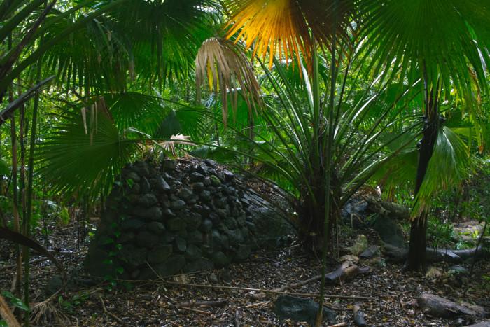 luakah_falls_oahu_hawaii-22