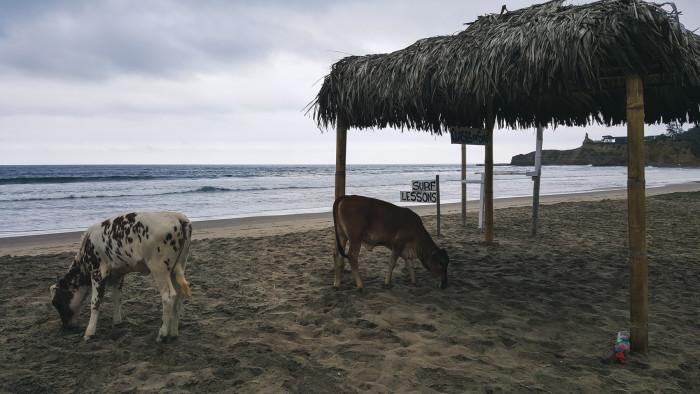 montanita_ecuador-7