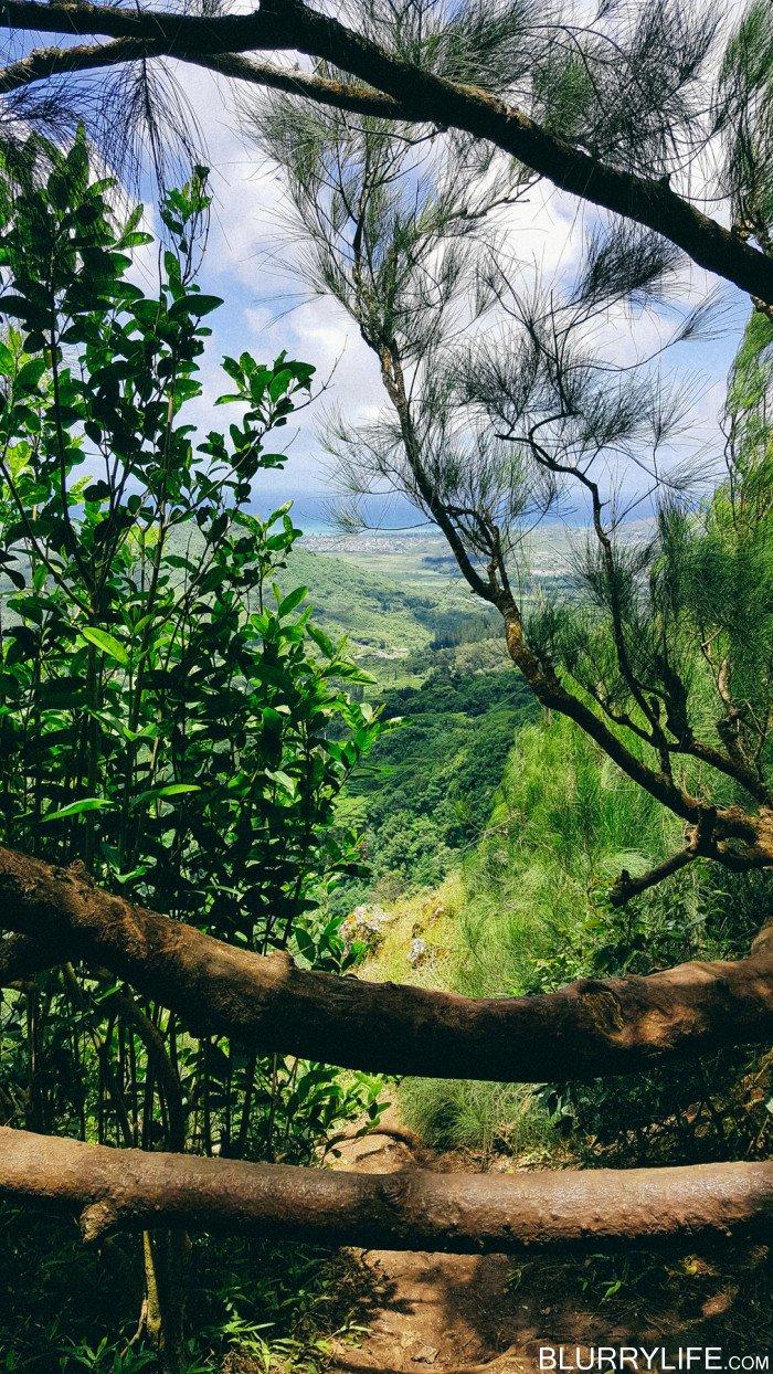 pali_puka_hike_oahu_hawaii-36