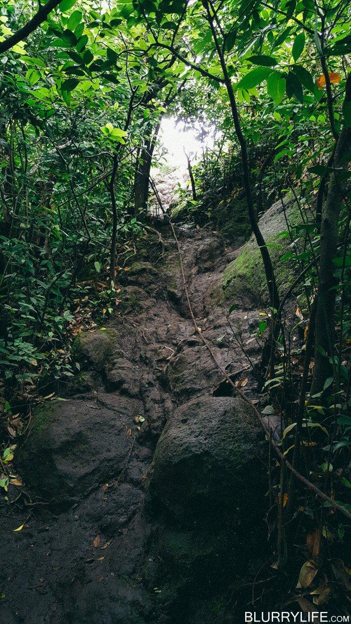 pali_puka_hike_oahu_hawaii-46