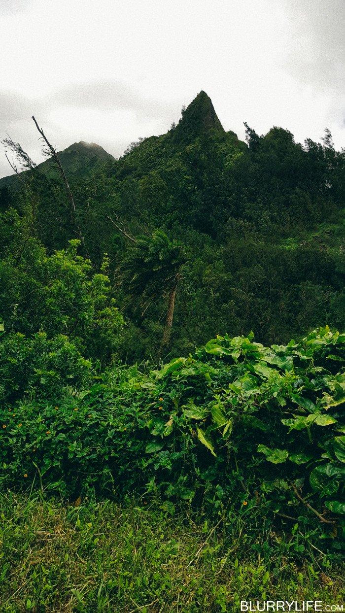 pali_puka_hike_oahu_hawaii-50