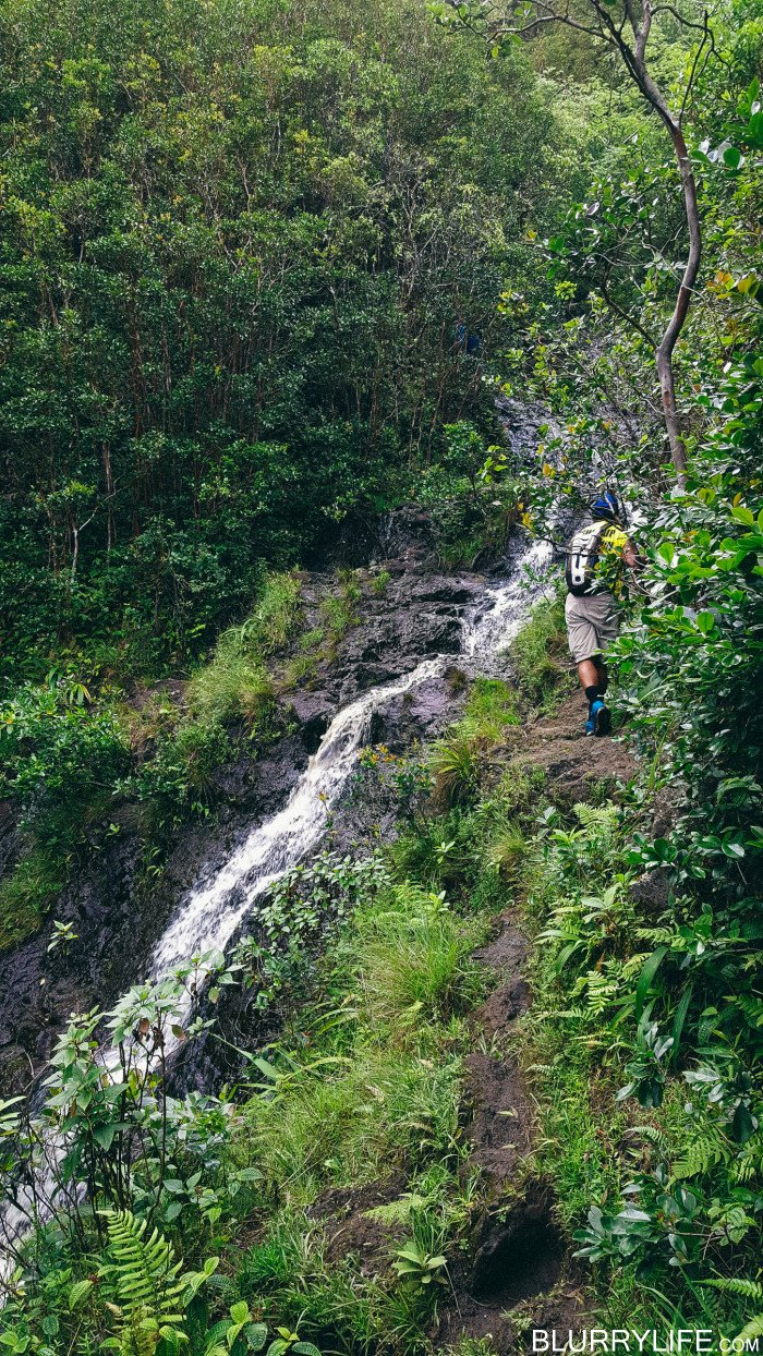 Ka'au_Crater_to_Mt_Olympus_Oahu_Hawaii-21