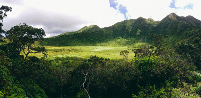 Ka'au_Crater_to_Mt_Olympus_Oahu_Hawaii-24
