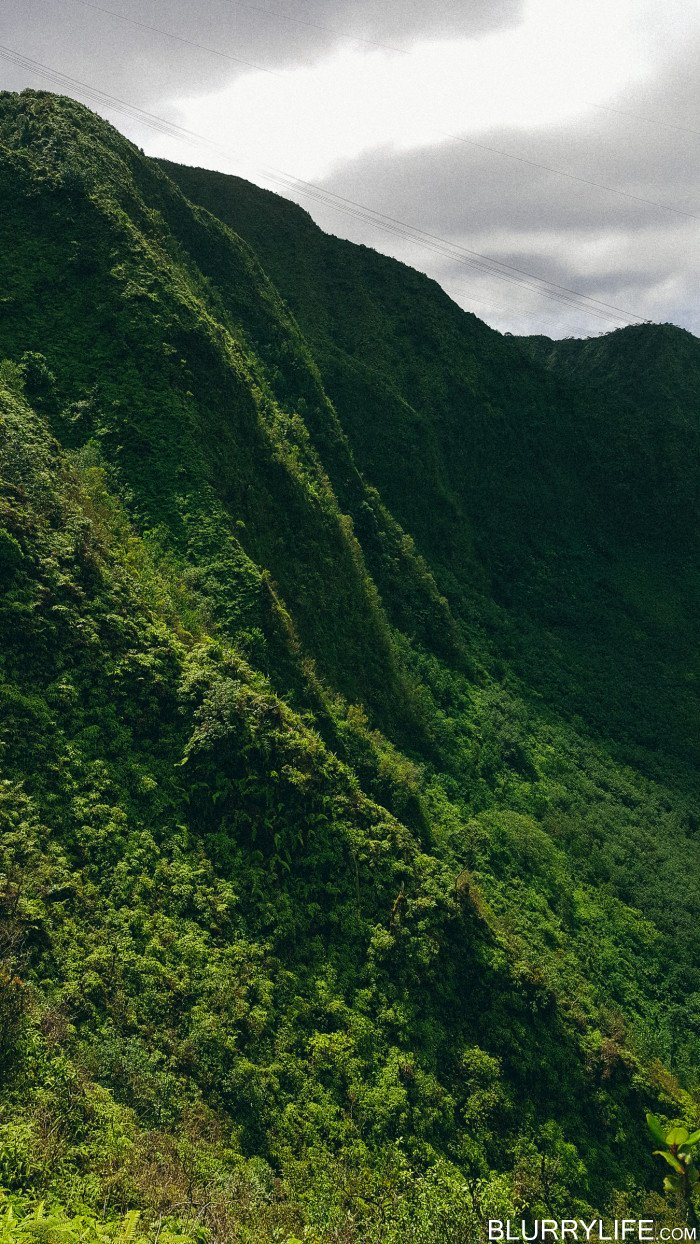 Ka'au_Crater_to_Mt_Olympus_Oahu_Hawaii-30