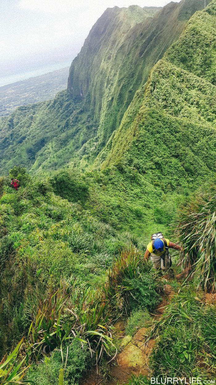 Ka'au_Crater_to_Mt_Olympus_Oahu_Hawaii-38