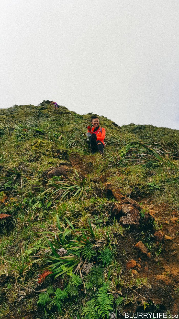 Ka'au_Crater_to_Mt_Olympus_Oahu_Hawaii-39