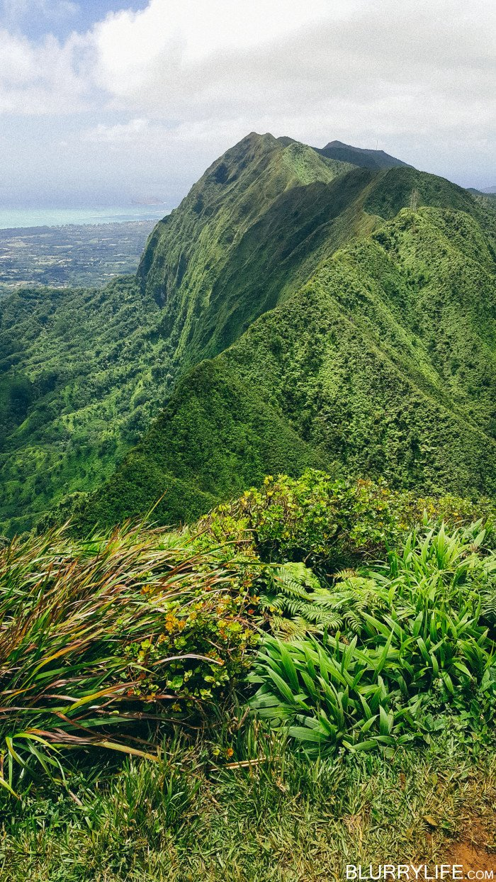 Ka'au_Crater_to_Mt_Olympus_Oahu_Hawaii-40