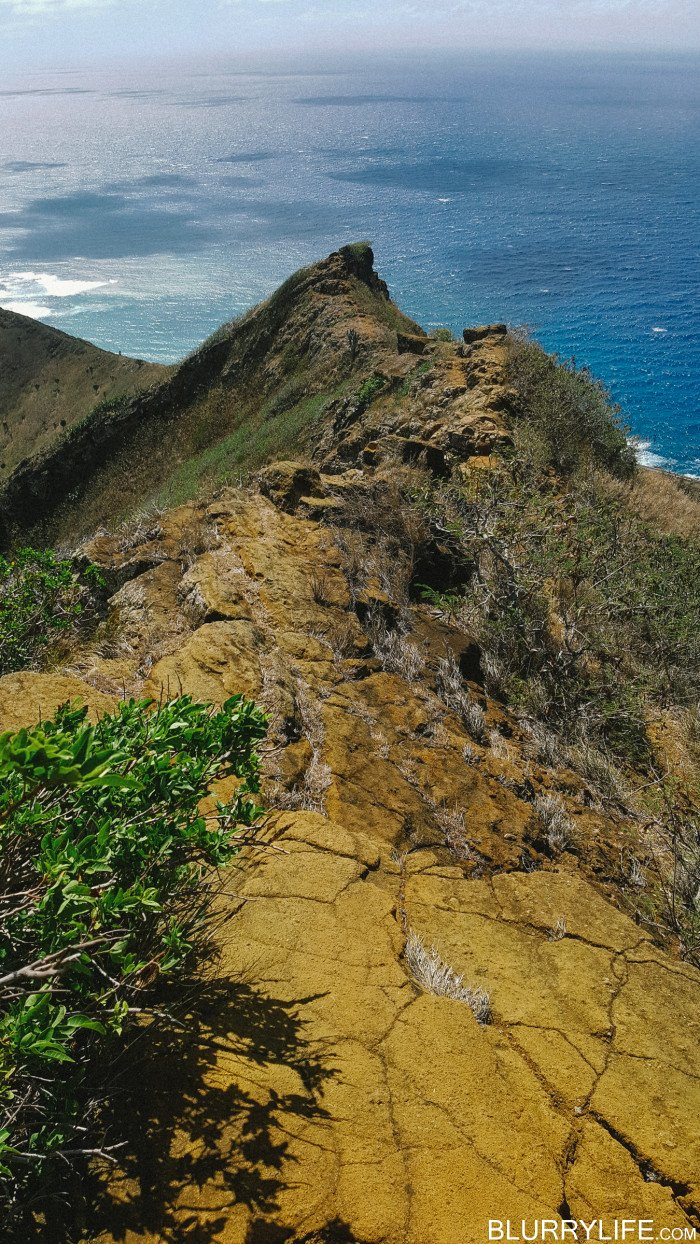 Koko_head_rim_trail_to_rock_bridge-3