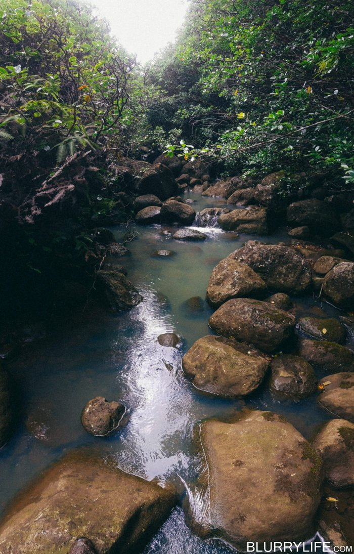 laie_18_waterfalls_oahu_hawaii-35