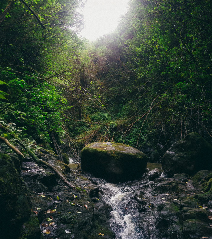 laie_18_waterfalls_oahu_hawaii-37