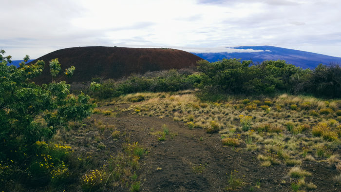 mauna_kea_summit_hike_humuula_trail-10