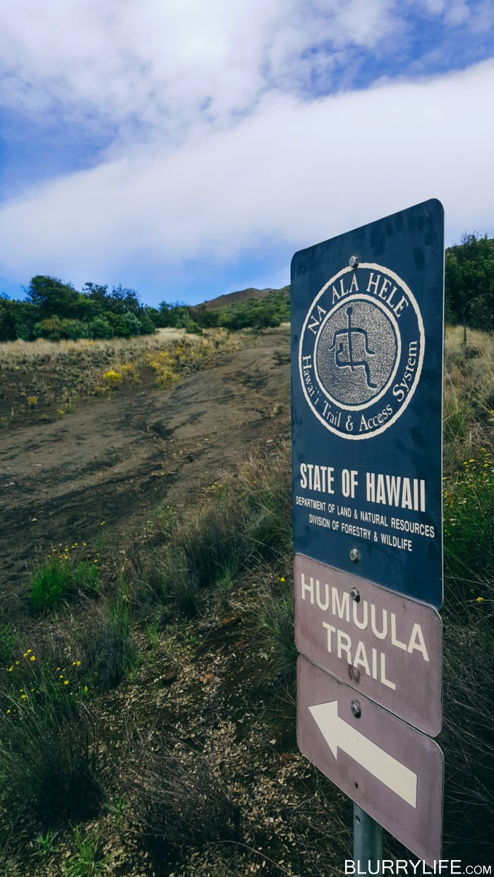 mauna_kea_summit_hike_humuula_trail-5
