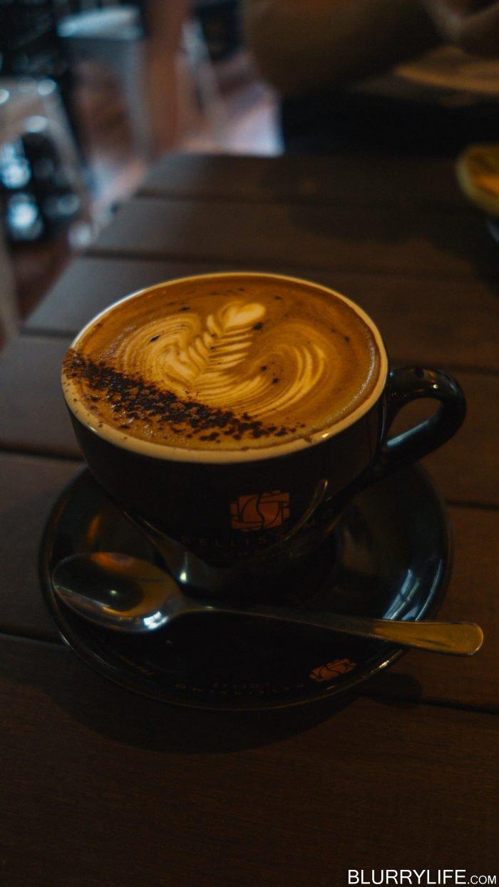 australia_trip_brisbane-2
