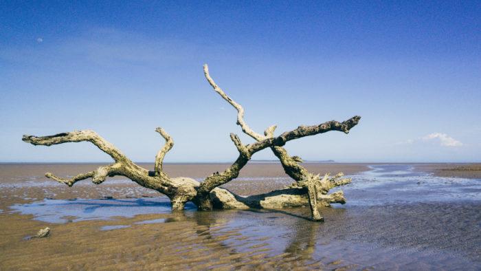 australia_trip_clairview_mud_flats-4