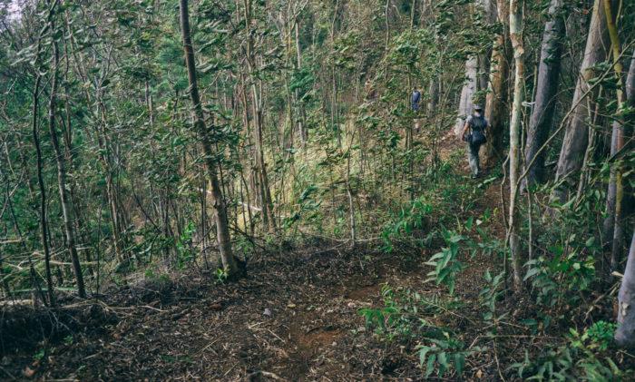 Wainae_ridge_trail_to_kaena_point-14