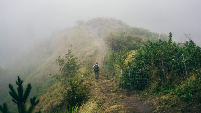 Wainae_ridge_trail_to_kaena_point-26