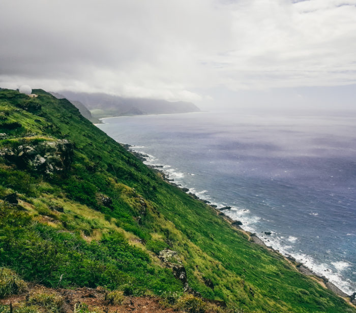 Wainae_ridge_trail_to_kaena_point-70