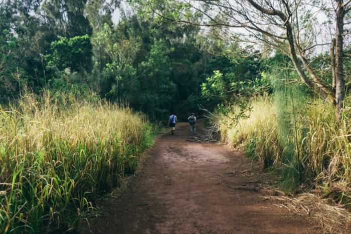 Wainae_ridge_trail_to_kaena_point-8