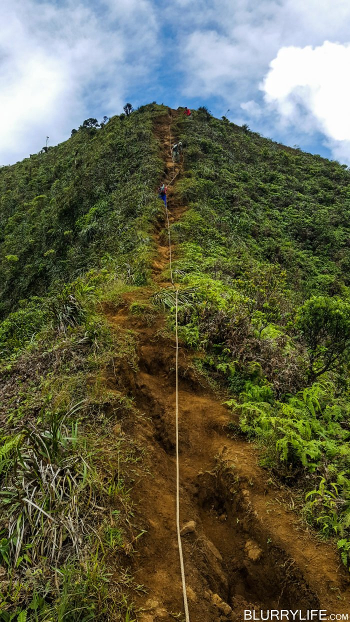 moanalua_ridge_to_stairway_to_heaven-50