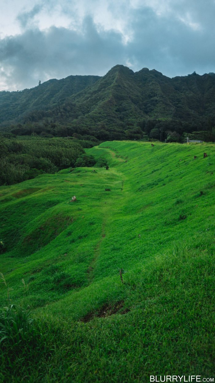 nuuanu_pali_reservoir_nature_walk-16